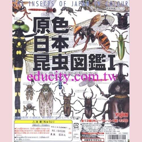 原色日本昆蟲圖鑑 P.1 單售