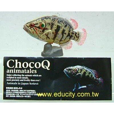 Choco Q 日本動物6 #153 關西淡水魚