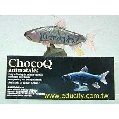 Chococ Q 日本動物6 #157琵琶水魚