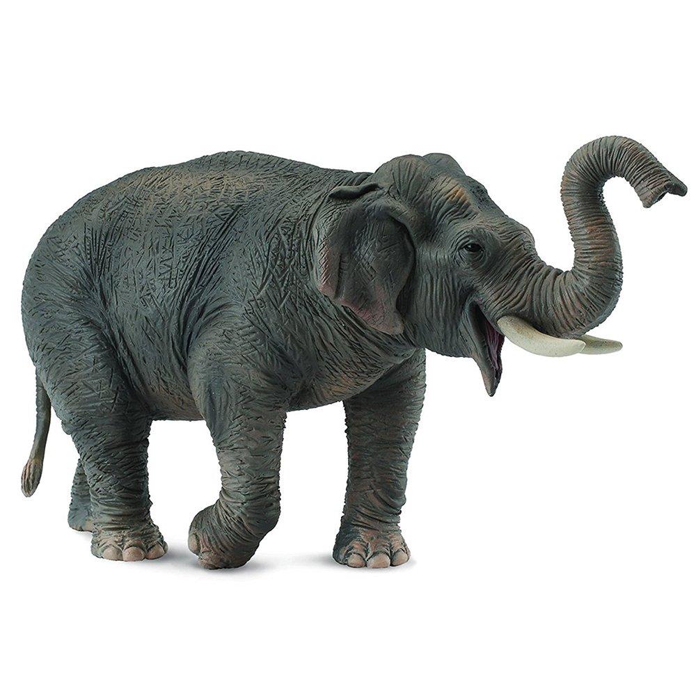《 COLLECTA 》英國 Procon 動物 亞洲象
