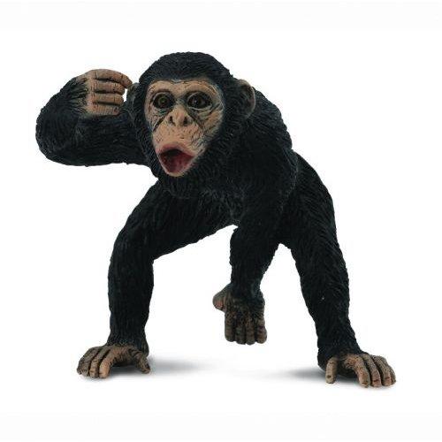 《 COLLECTA 》英國 Procon 動物模型 公黑猩猩