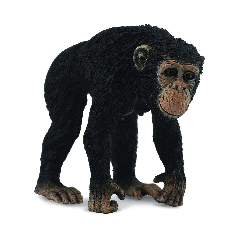 《 COLLECTA 》英國 Procon 動物模型 母黑猩猩