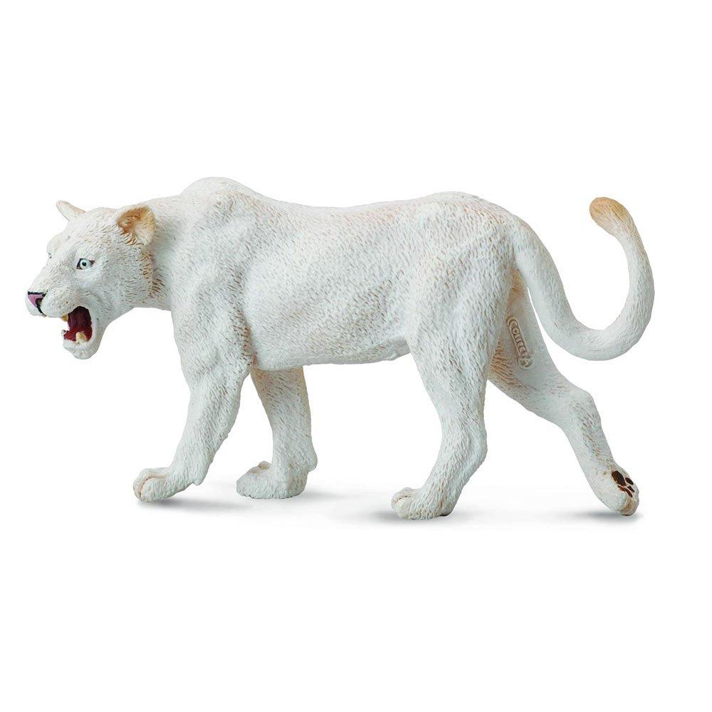 《 COLLECTA 》英國 Procon 動物模型 白母獅