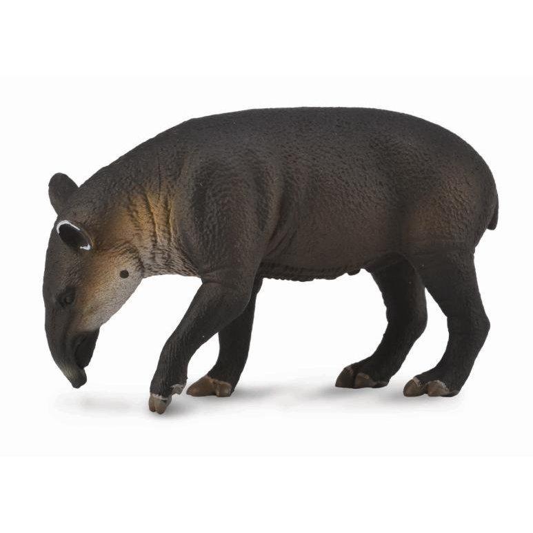 《 COLLECTA 》英國 Procon 動物 中美貘