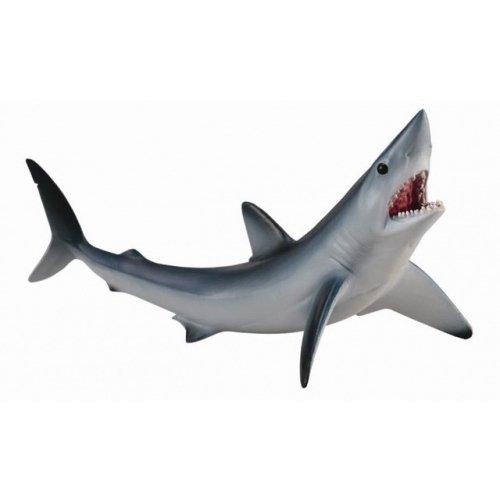 《 COLLECTA 》英國 Procon 動物模型 尖吻鲭鯊
