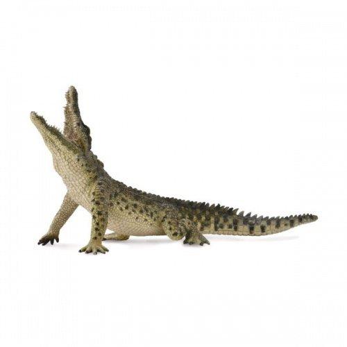 《 COLLECTA 》英國 Procon 動物模型 尼羅鱷 躍起【活動嘴巴】