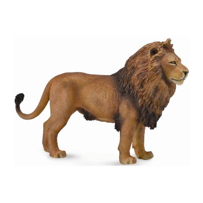 《 COLLECTA 》英國 Procon 動物模型 非洲雄獅