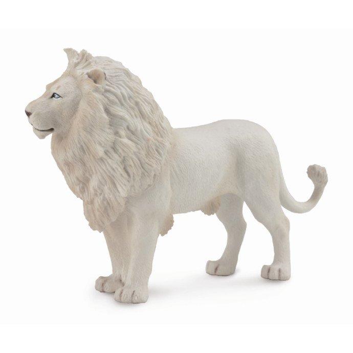 《 COLLECTA 》英國 Procon 動物模型 白公獅
