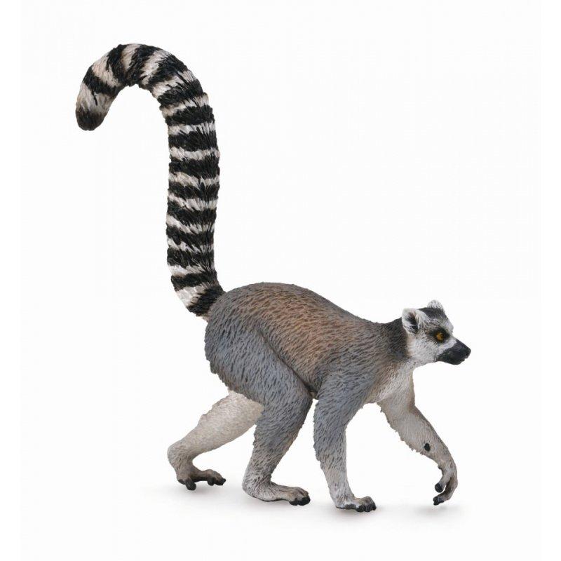 《 COLLECTA 》英國 Procon 動物模型 環尾狐猴
