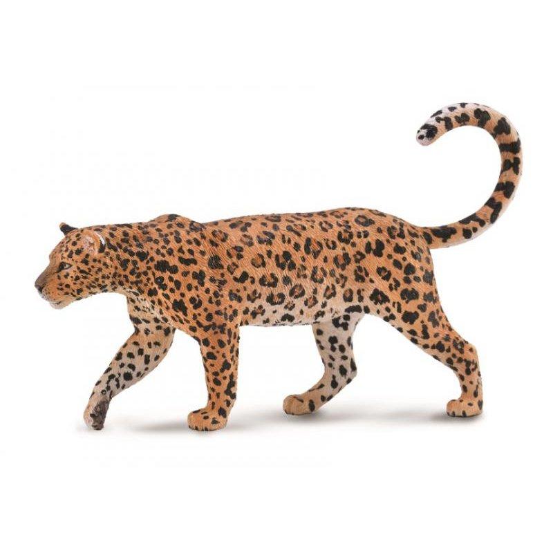 《 COLLECTA 》英國 Procon 動物模型 非洲豹