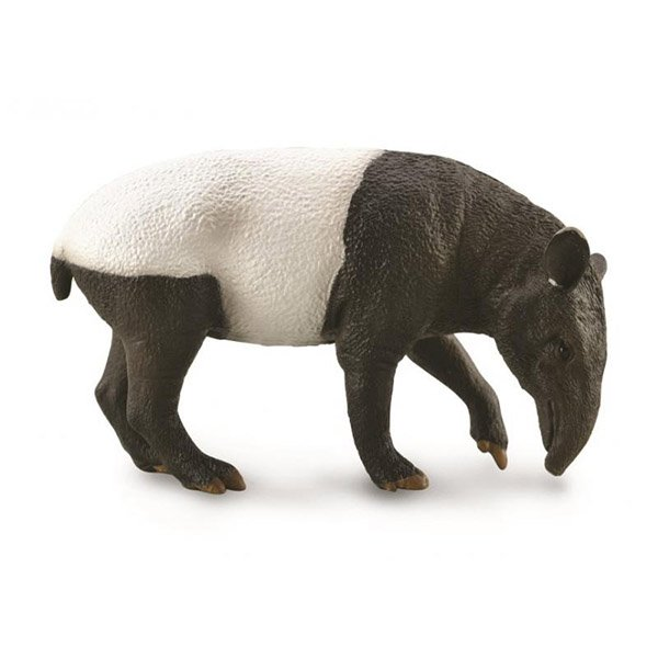 《 COLLECTA 》英國 Procon 動物模型 馬來貘