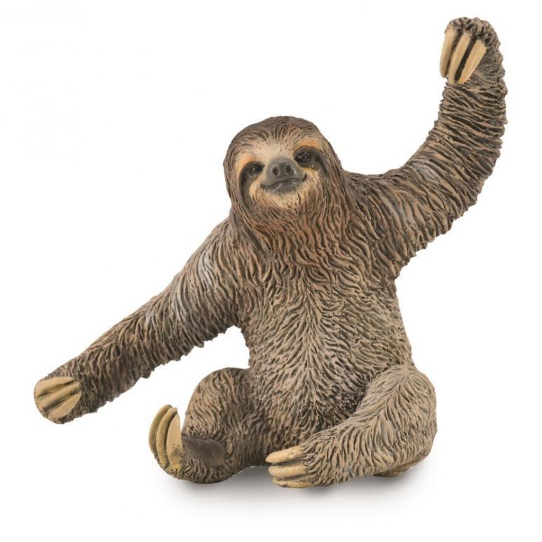 《 COLLECTA 》英國 Procon 動物模型 樹懶