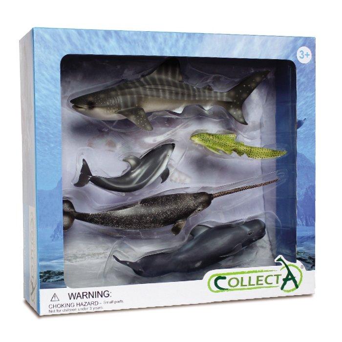 《 COLLECTA 》動物模型 海洋生物禮盒組 (5入)