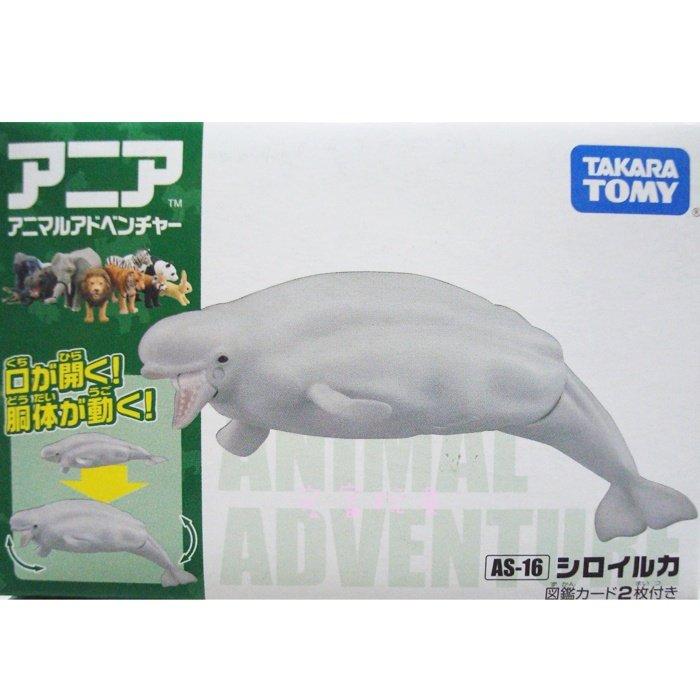 TOMY 動物模型 AS-16 白鯨